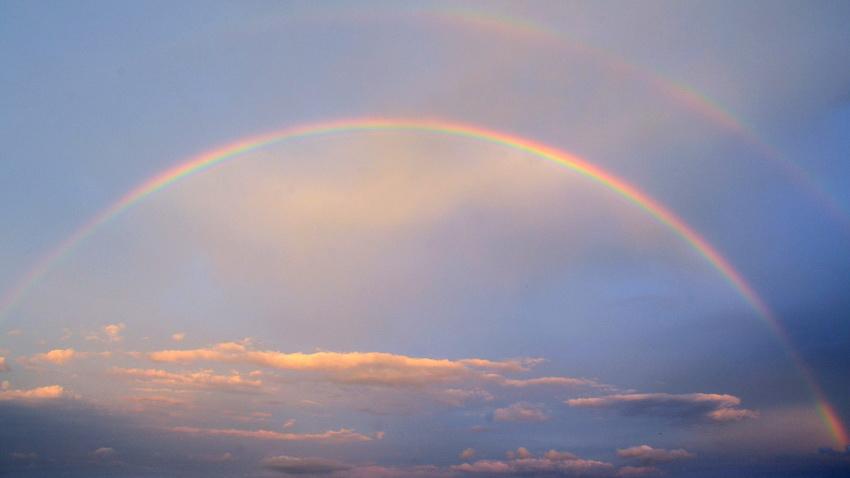 Parashat Noach – Ça va bien aller