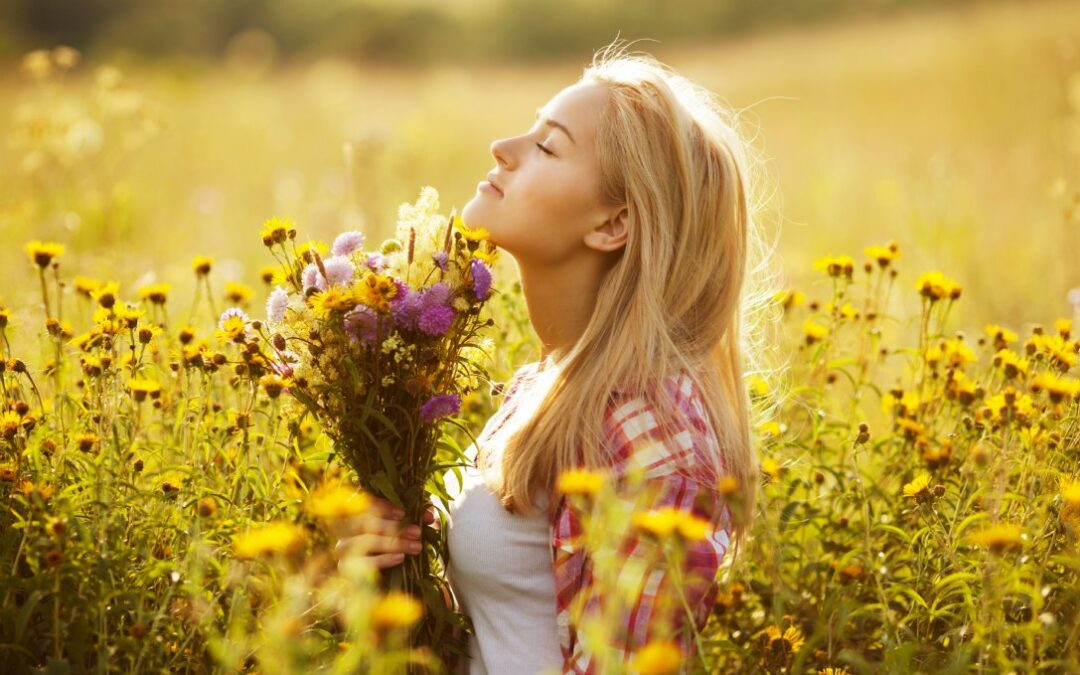 Parashat Korach: Happiness is being content with what we have